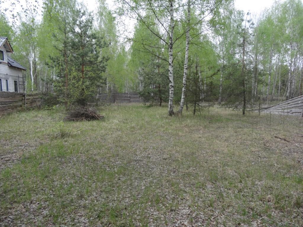 Продам два дома Киево-Святошинский район с.Дмитровка, два дома расположены рядом, в окружении смешанного леса, один дом 160 кв.м