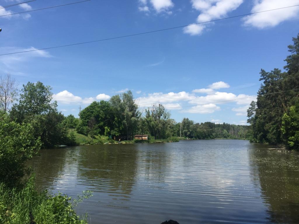 Продам базу отдыха Макаровский район с.Бышев – 5 домов на берегу озера – 4 га